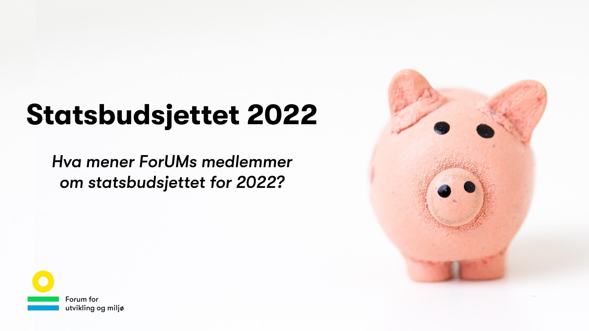 Hva mener ForUMs medlemmer om statsbudsjettet for 2022?
