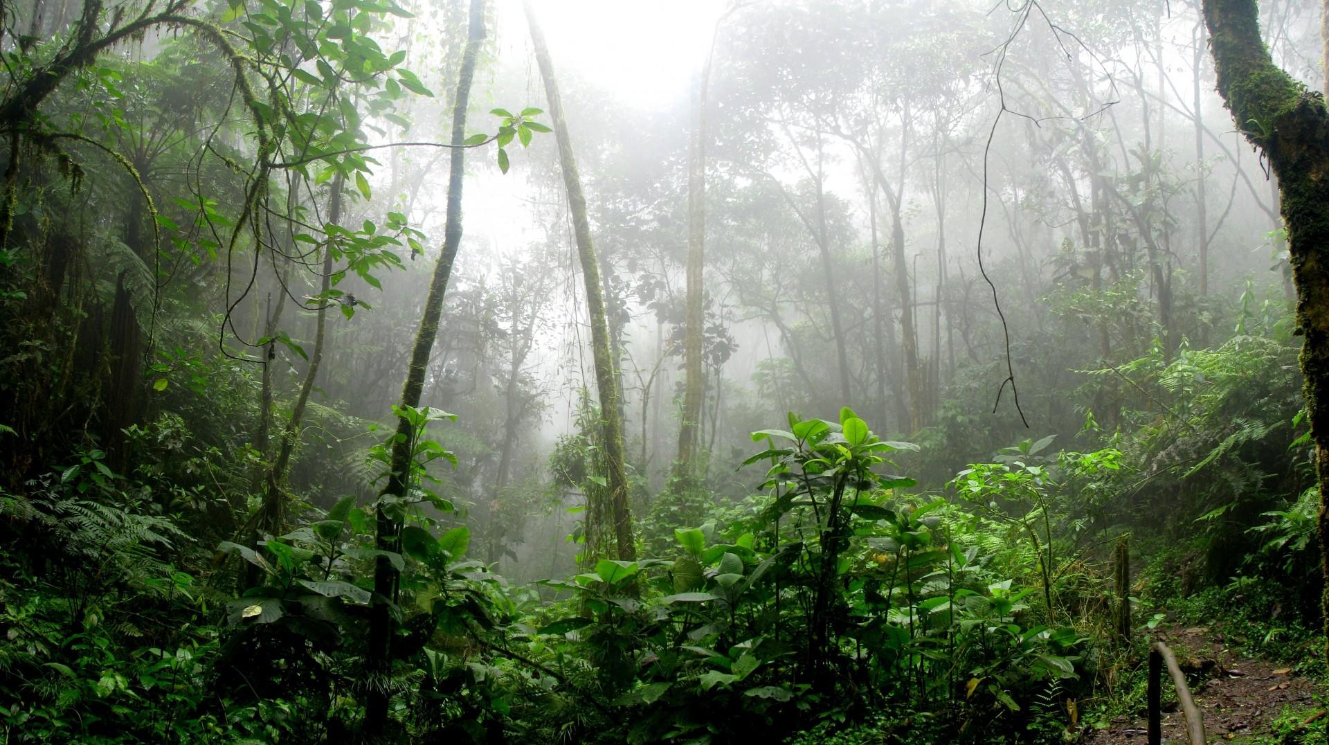 Trenger naturmangfold