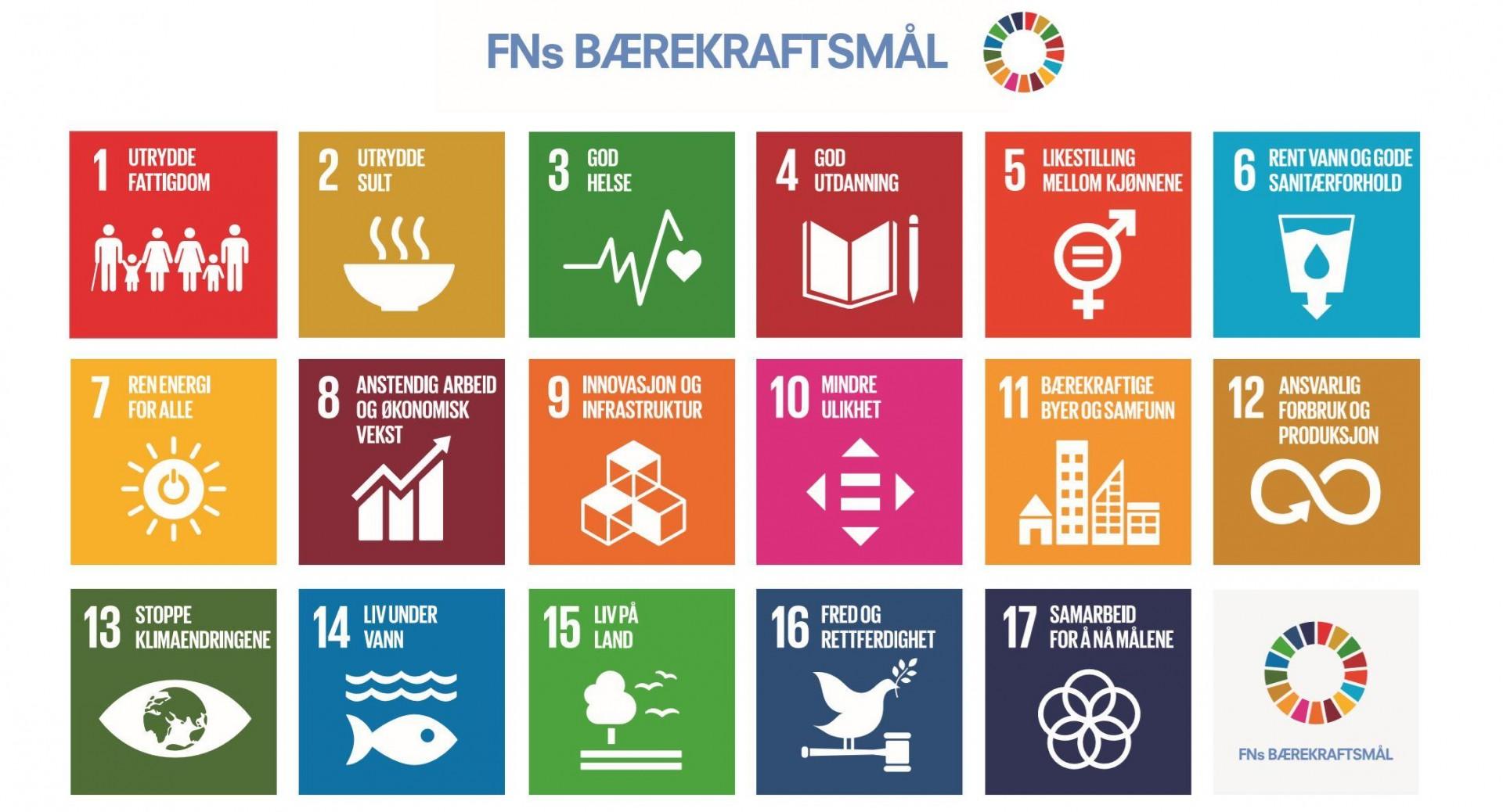 Ledig stilling i Forum for utvikling og miljø