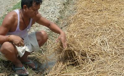 Ansvarlige investeringer i landbruket