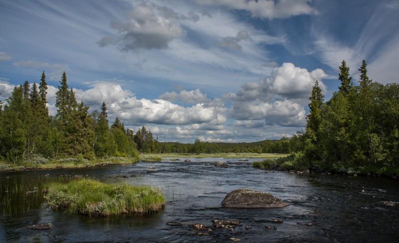 — Norge har sviktet naturen