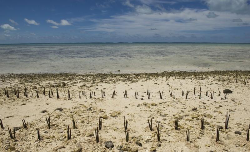 Skjør fremgang i klimaforhandlingene