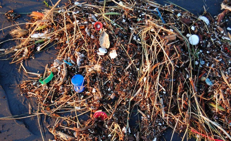 Nullvisjon for marin forsøpling og en styrket FNs miljøforsamling