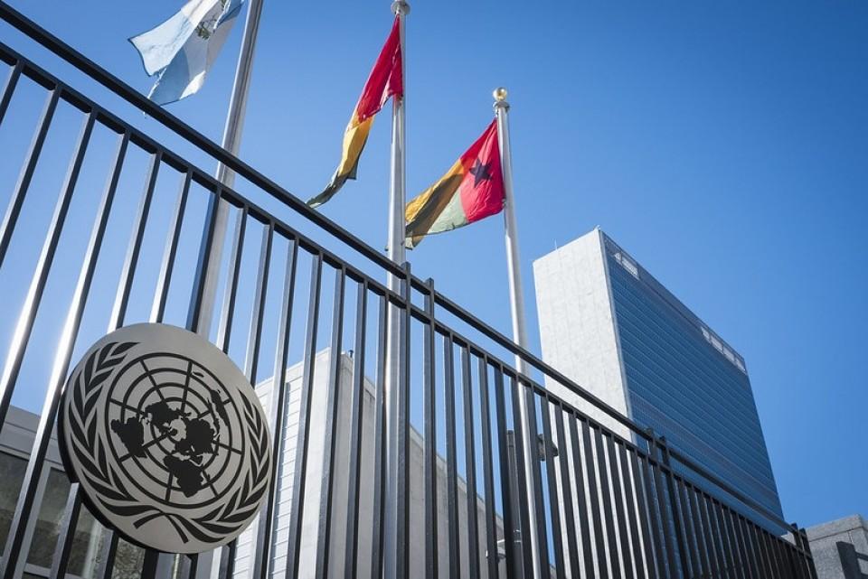 Kan FN tette skattehullene?