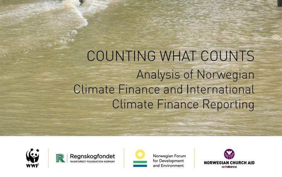 Norwegian and international climate finance