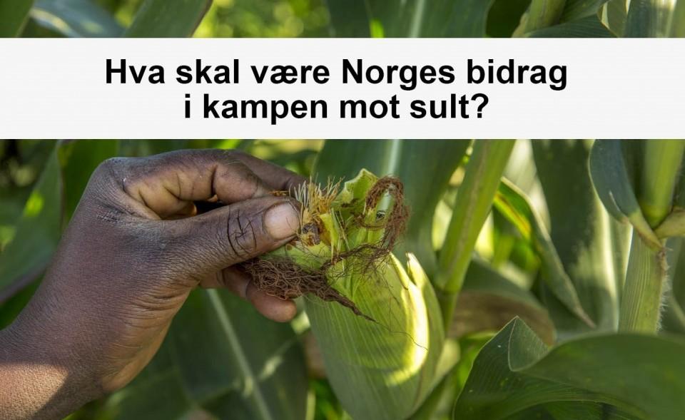 Hva skal være Norges bidrag i kampen mot sult?