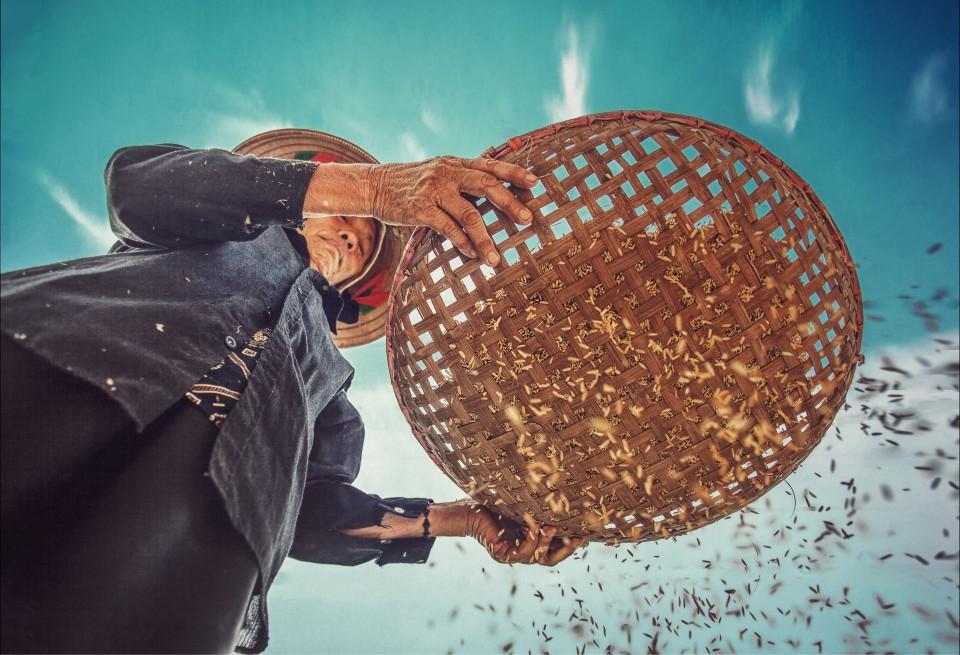 Velkommen til webinar om bærekraftige matsystemer