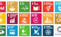 En regjering for bærekraftig utvikling?